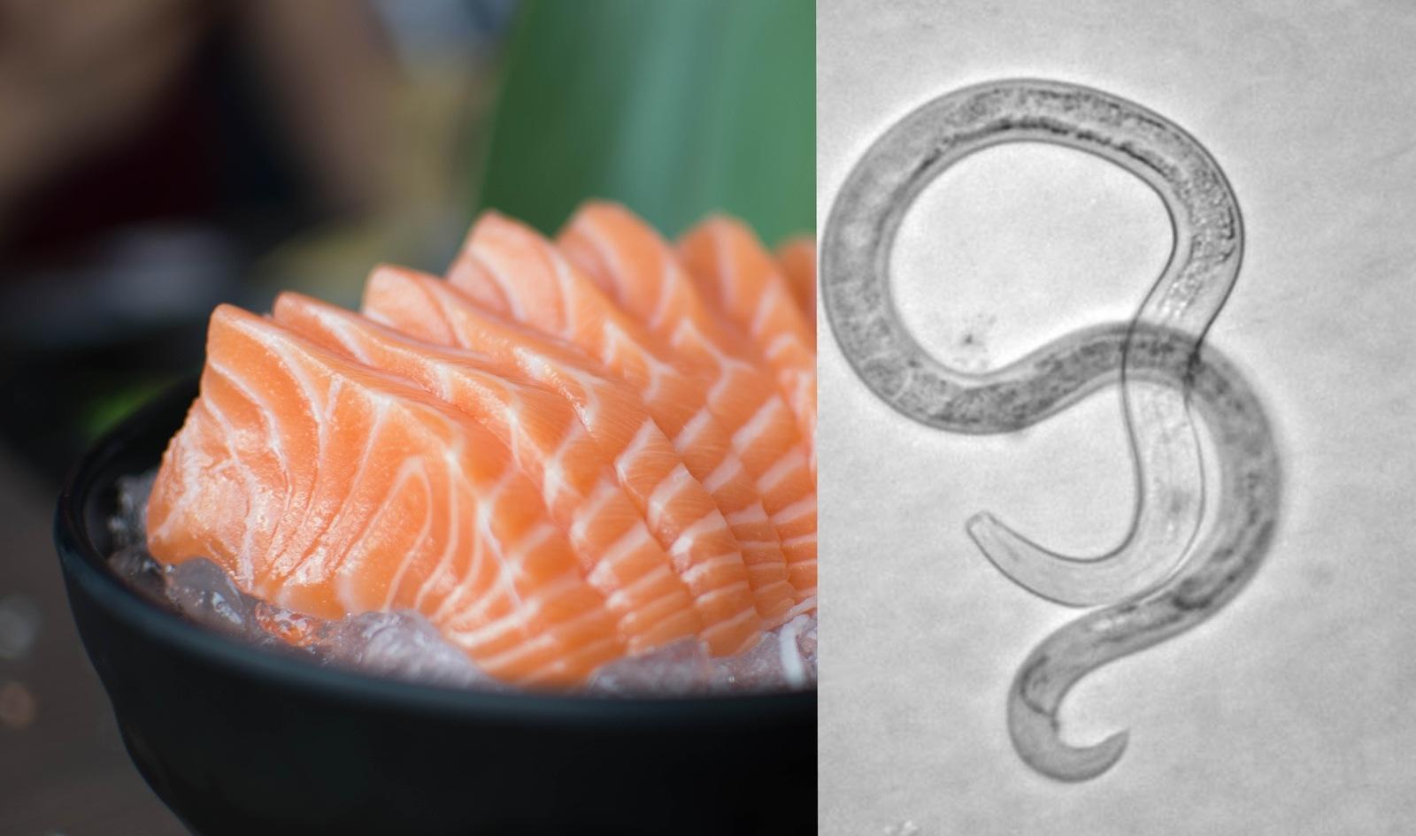 Анисакиоз - опасность при употреблении суши