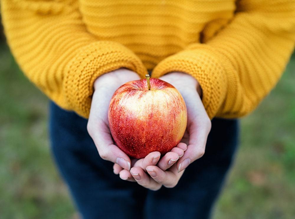 Яблоки: насколько они полезны на самом деле?
