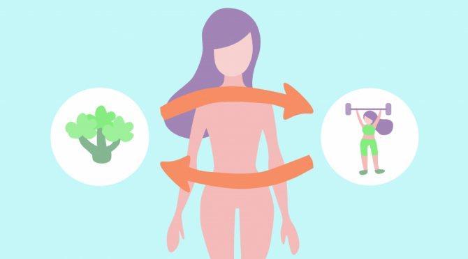 Признаки хорошего метаболизма