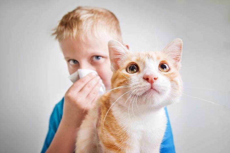 Как возраст влияет на аллергию?