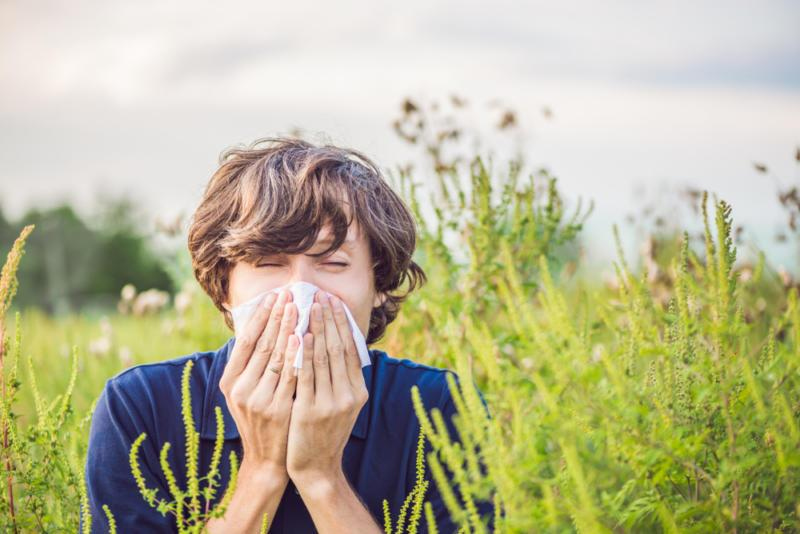 Аллергия на цветение, как подготовиться и пережить