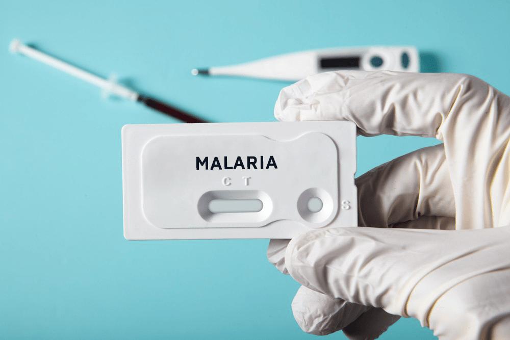 Малярия: диагностика, лечение, профилактика